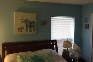 $600 Female furnished Room For Rent near Celebration (Celebration/Kissimmee)