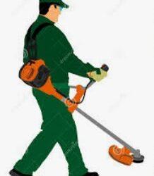 Trabajador de mantenimiento de paisaje / Landscape Maintenance Worker (Broward County)