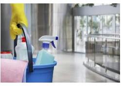 Heavy duty cleaninghelp (PLANTATION)