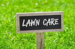 Lawn care worker needed (Orlando / Altamnote Springs)