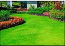Lawn Care Crew Members needed (1365 E Semoran Blvd (Apopka))
