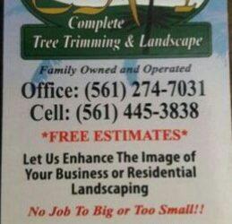 Ground Technician/ Tree cutters/Climbers