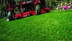 Landscape Maintenance Crew Leader/Driver (Ft. Lauderdale)