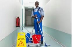 Trabajo de limpieza (Orlando)