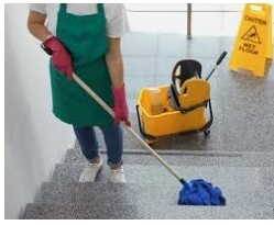 Janitorial Cleaners (Orlando)
