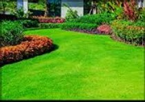 landscaping/laborer (Boca Raton)