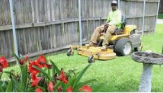 Commercial landscapers needed (Broward)