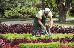 Grounds employee (Hialeah – Miami Shores)