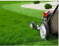 Lawn maintenance laborer (Broward County)