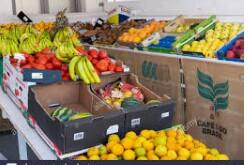 Selector de Ordenes Para Warehouse de Vegetales 2ndo turno (miami)