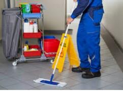 Janitorial worker needed (Oldsmar, FL)