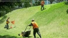 Lawn/Landscape — Cortar el Césped/Yarda Mantenimiento (Multiple Locations: Broward & Palm Beach Counties)