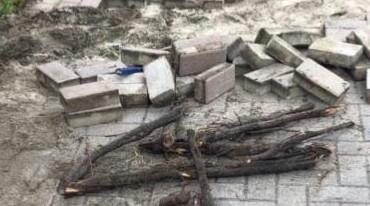 PAVER installation and CONCRETE repairs (Boca Raton)