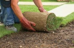 Groundskeeper in Shopping Plaza PINECREST/KENDALL (KENDALL)