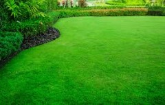 Experienced lawn and garden mechanic needed (Miami)