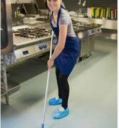 Restaurant Cleaning / Dishwasher (Miami Beach)