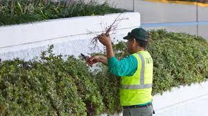 Landscape Maintenance and Installation (Marietta)