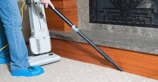Rug Cleaning Assistant (Norcross, GA)