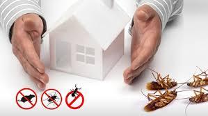 Pest Control Service (Dallas)