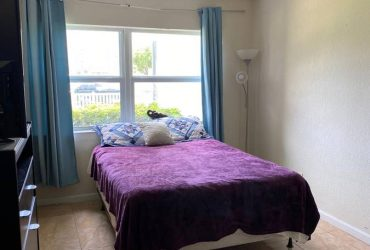 $600 Room for rent one mile from the beach (Hallandale)