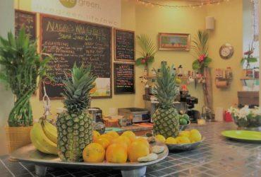 Juice Bartender (North Palm Beach, FL)