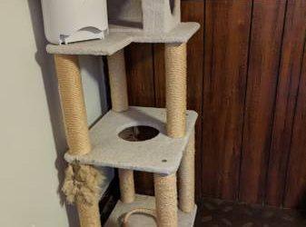 "4' 8"" tall cat tree, Wopet automatic feeder (Oak Forest)"