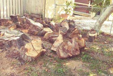 free oakwood chunks (tarpon springs)