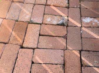 Free Bricks – Boral Clay (not pavers) (Boca Raton)