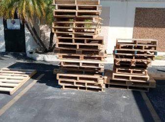 FREE PALLETS (Tampa)