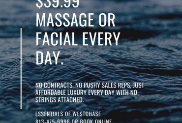 Essentials Massage & Facial Spa of Westchase