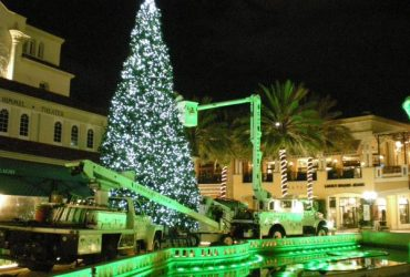 HOLIDAY LIGHT INSTALLERS WANTED – NO EXPERIENCE REQUIRED (Riviera Beach)